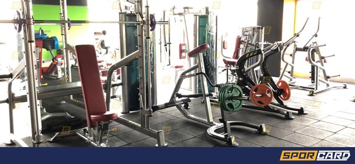 Anatomy Fitness 7/24