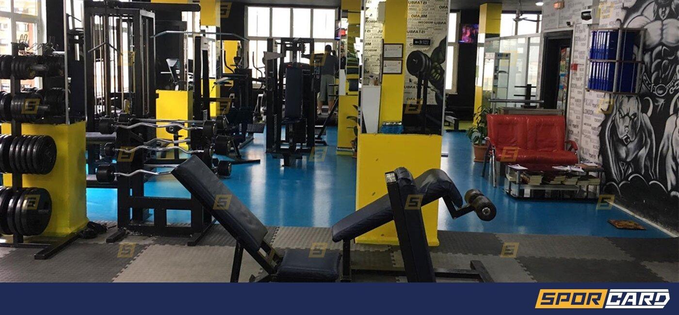King Fitness Spor Club