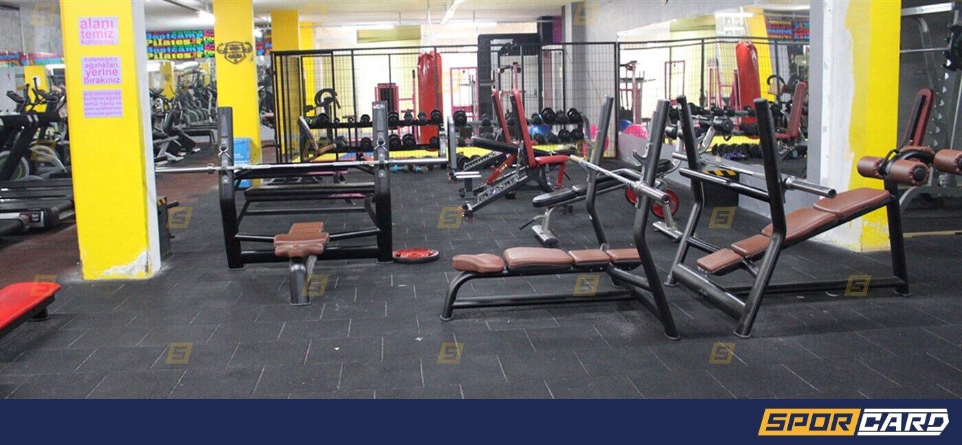 Powerzone Gym