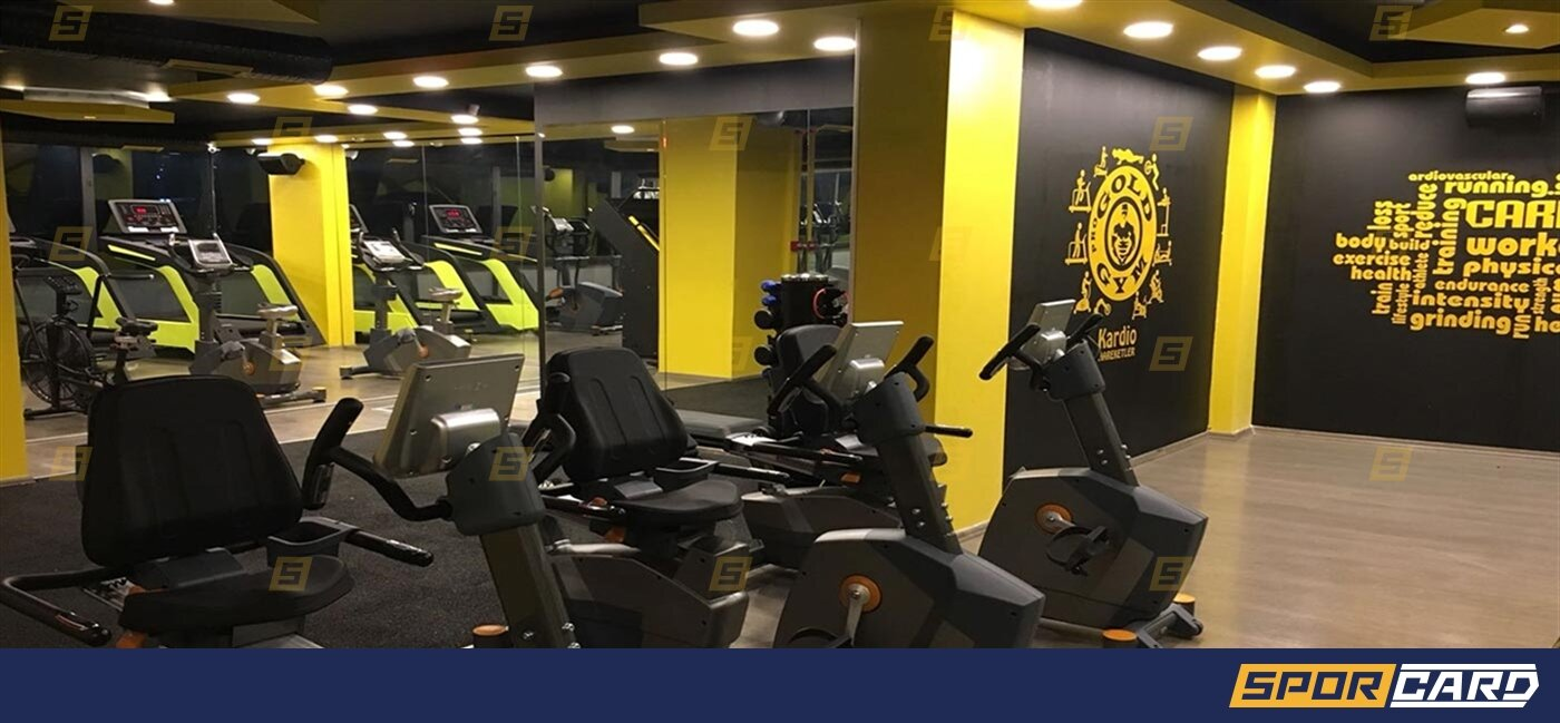 Pro Gold Gym