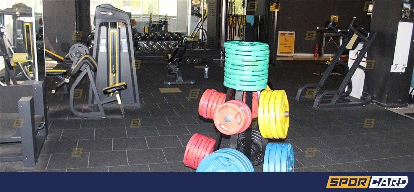 Gold Power Gym